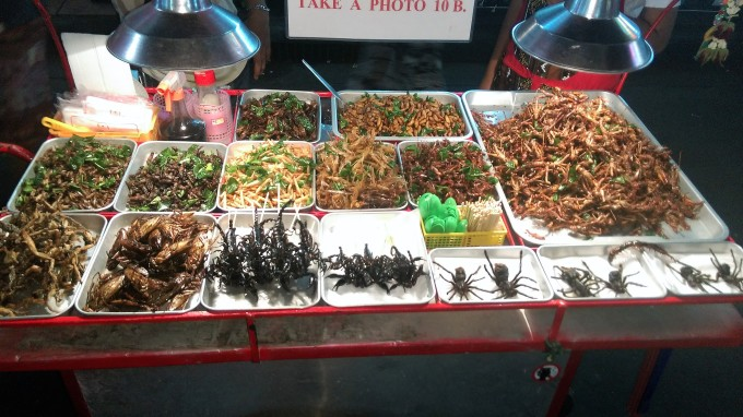 insects-food-bizarre-crazy-interesting-disgusting
